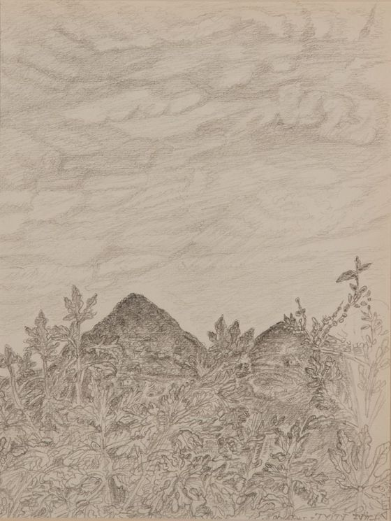 Ganczaugh Miklós: Fügék és a Tóti hegy