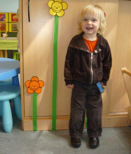 Begeleide of zelfstandige activiteit - Meten met bloemen