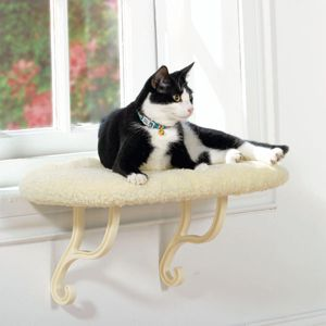 Cat Beds, Kitty Sill, Cat Windows, Crazy Cat, Cities Life, Windows Perch, Cat Stuff, Pets Cat, Pets Products