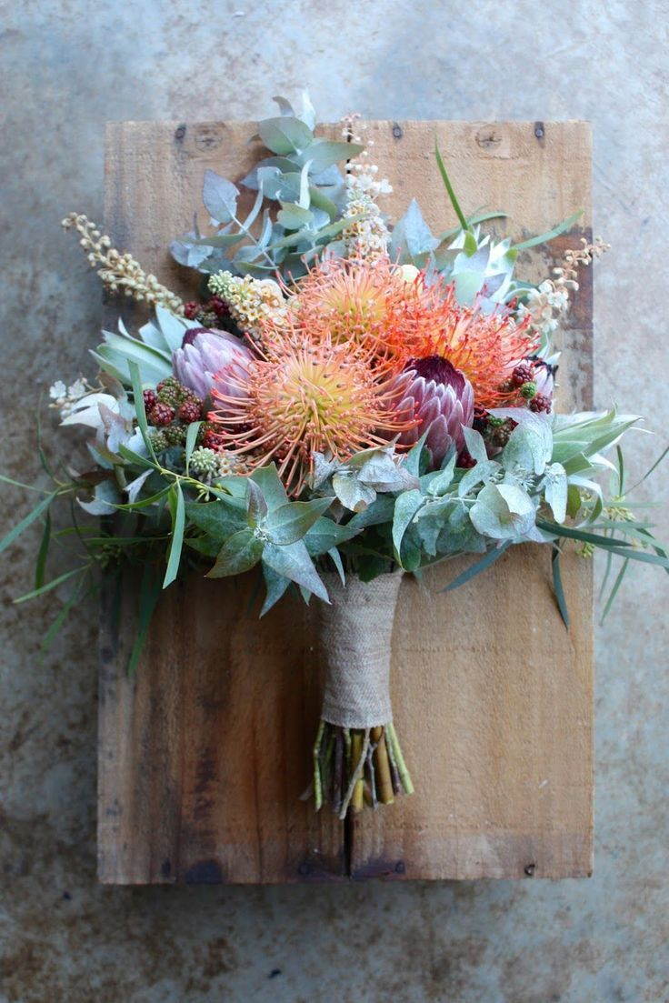 What S Flowering In February February Is A Bridge Between Seasons With Availability Of Some Late Summer Flowers Australian Native Flowers Flower Arrangements