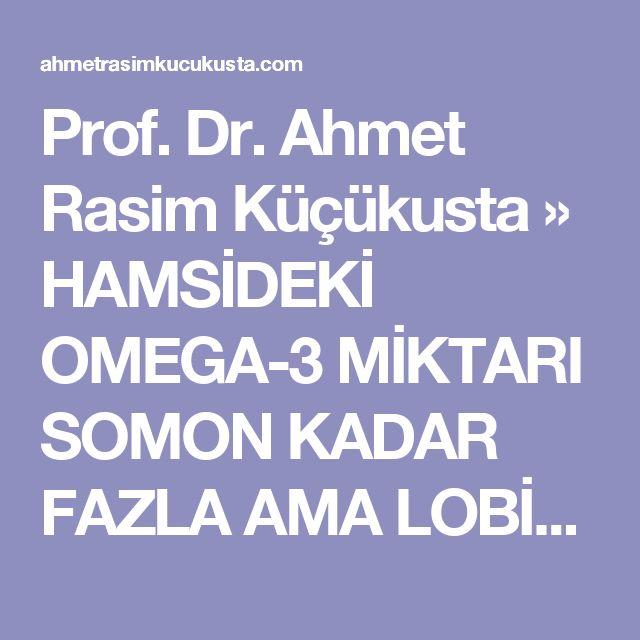 Prof. Dr. Ahmet Rasim Küçükusta » HAMSİDEKİ OMEGA-3 MİKTARI SOMON KADAR FAZLA AMA LOBİSİ YOK!