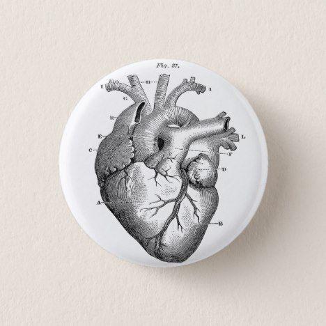 Anatomical Human Heart Diagram button pin #valentine #valentinesday #valentine #valentines #giftsforher #love #giftsforhim