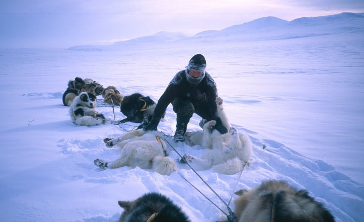 Greenland by dog sledge: The Sirius Patrol in numbers