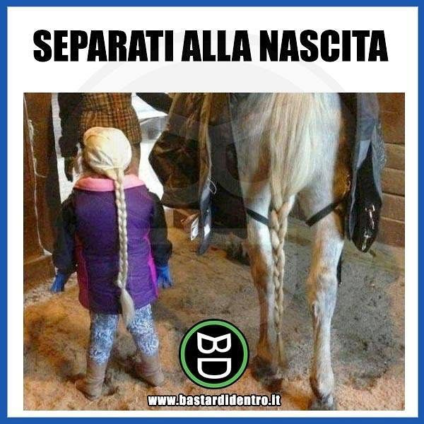 Separati alla nascita... Seguici su youtube/bastardidentro #bastardidentro #perfettamentebastardidentro #cavallo… www.bastardidentro.it