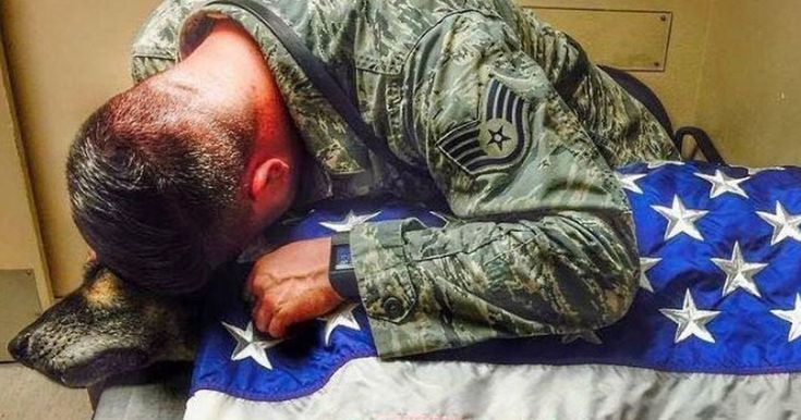 Kyle Smith served four military tours with Bodza and adopted him in 2014 when the German Shepherd was retired from duty