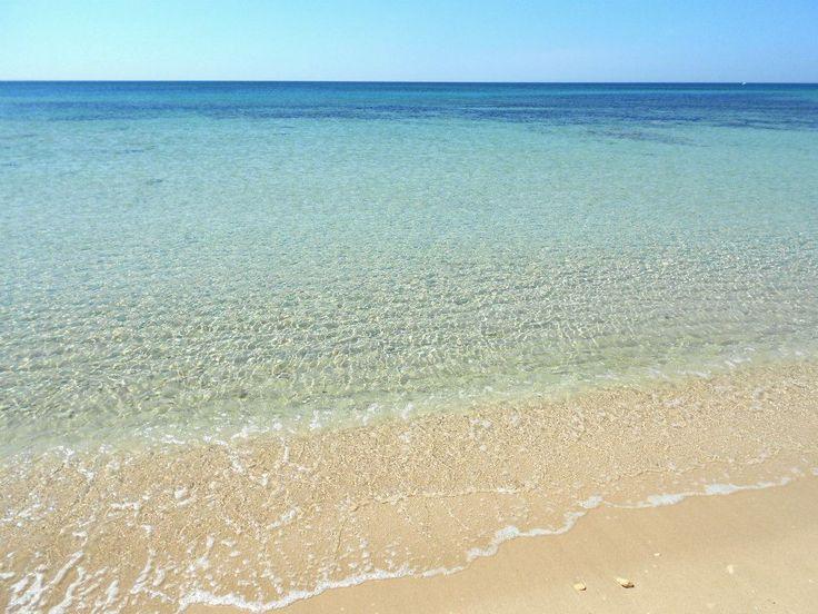 il mare trasparente ed incontaminato di campomarino the clear unpolluted seaside of campomarino