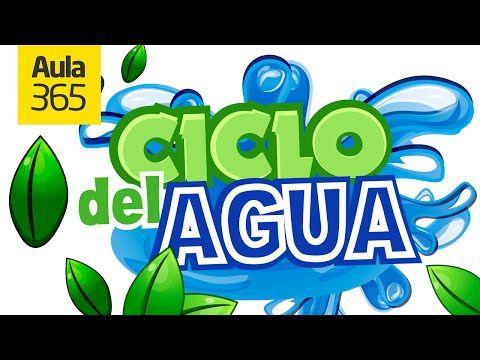El Ciclo del Agua y sus Estados | Videos Educativos para Niños - YouTube