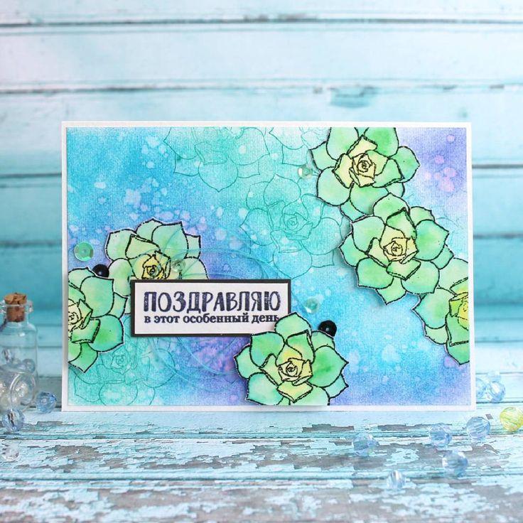 Открытка с цветком Эониума. Сразу и не догадаешься, что цветок кактуса