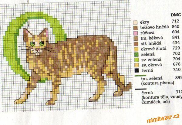Cat O