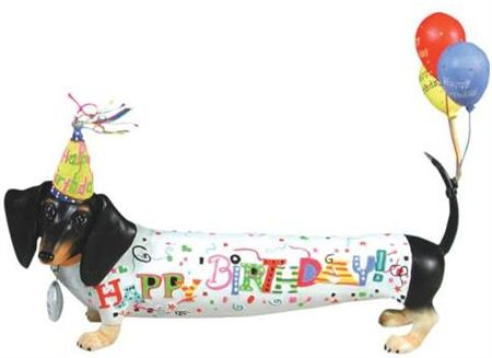 Birthday Week: Desktop Wallpaper Download | Ammo the Dachshund |Weiner Dog Birthday Memes