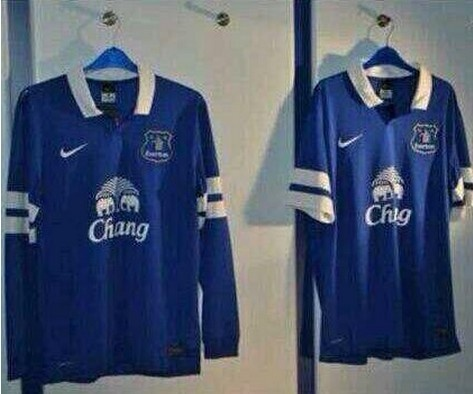 LEAKED: Could this be Everton's new home kit for the 2013-14 campaign?