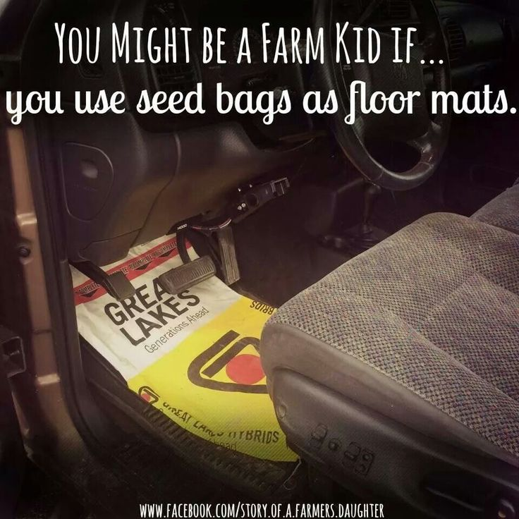 OR SEAT COVERS BEACAUSE A) THE SEAT WAS WORN OUT, OR B)DAD LEFT THE WINDOW OPEN AND IT RAINED LAST NIGHT