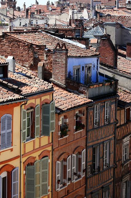 Toulouse rooftops, France