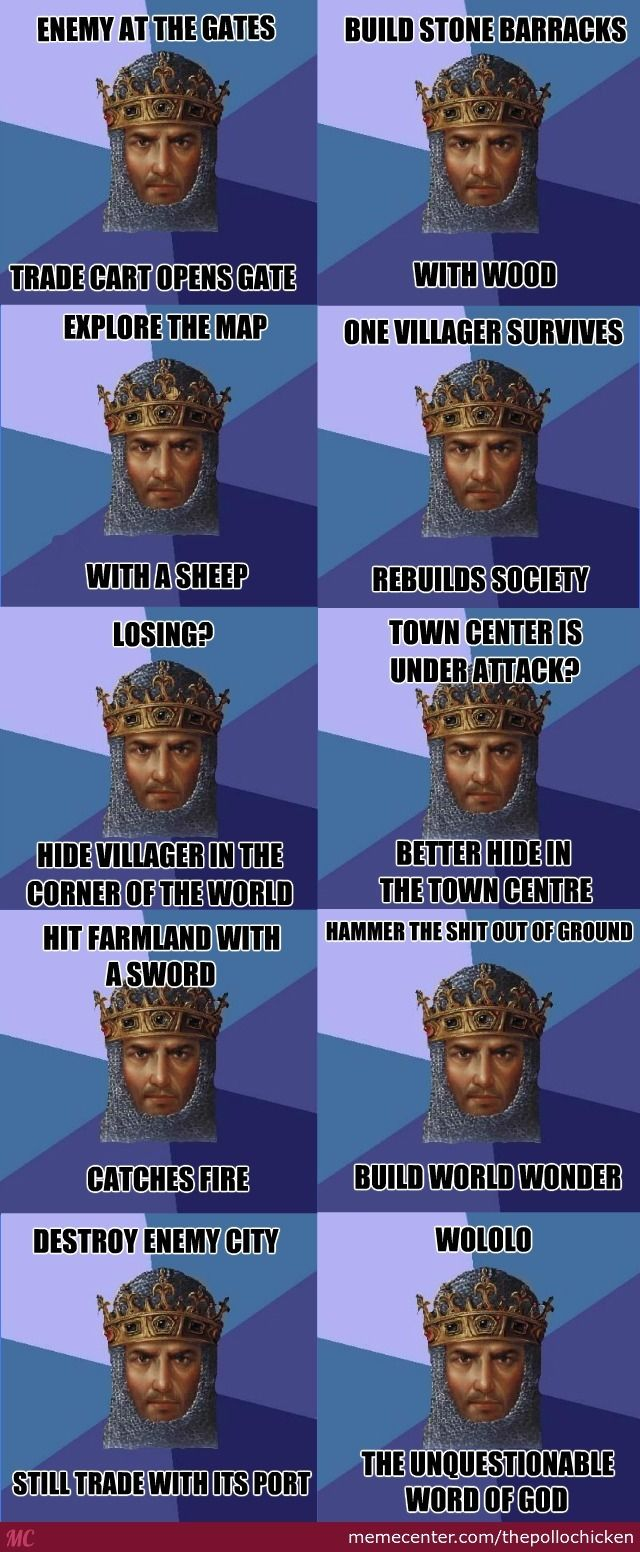Age Of Empires And Its Unquestionable Logic----Please excuse the cuss word in this pin.