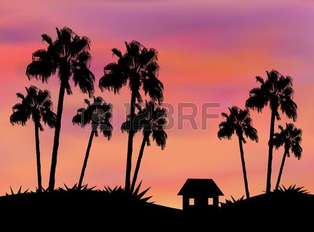 Tall palm trees and a little house in sunset Stock Photo