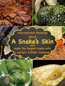 What kid isn't fascinated by snakes!  First, they will read about a snake's skin.  Then, they will read about six types of snakes.  They will learn about a particular snake's skin (Eastern Diamondback Rattlesnake, King Snake, Common Garter Snake, Rainbow Boa Constrictor, Burmese Python, and Coral Snake).