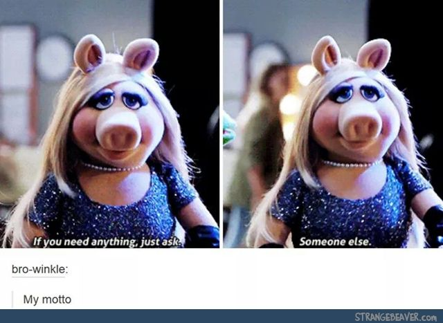 Miss piggy is me if I was a pig
