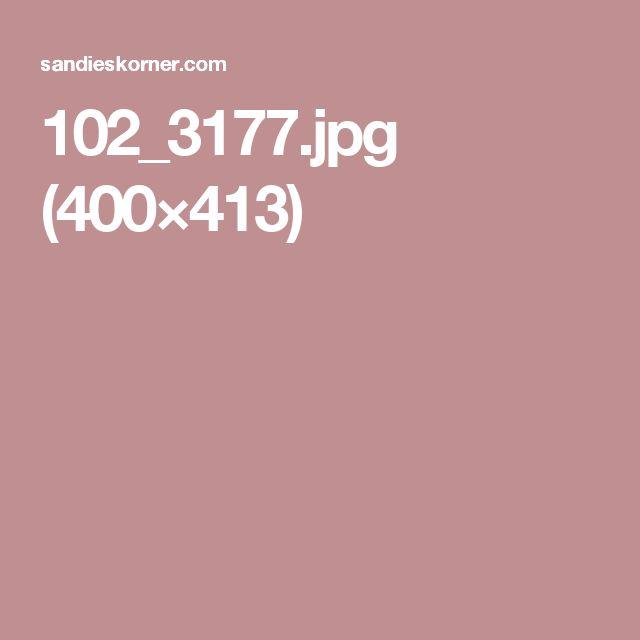 102_3177.jpg (400×413)