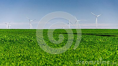 Wind turbines standing in a crop field landscape. Spring, daylight, clear sky. Copy space on green field.