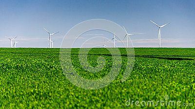 Wind turbines standing in a crop field landscape. Spring, daylight, clear sky. Copy space on green field.