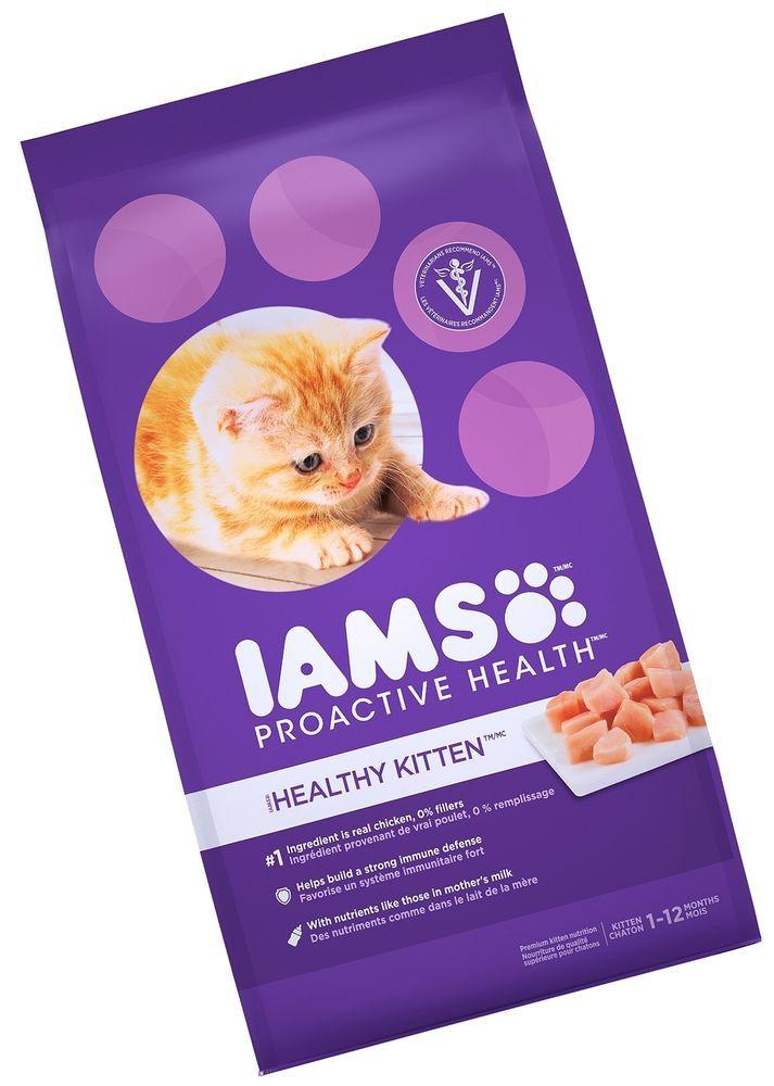 Iams Proactive Health Kitten Dry Cat Food Standard Packagin New Free Shipping
