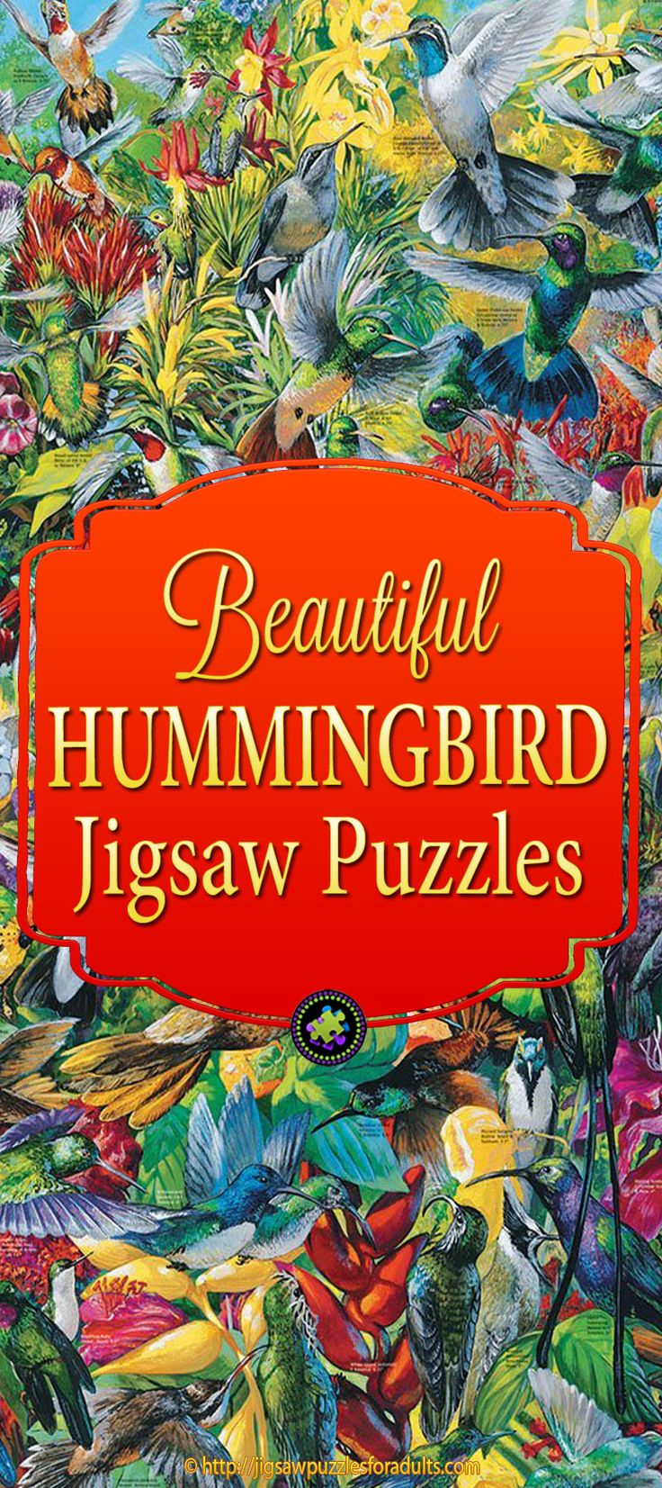 27 best hummingbird jigsaw puzzles images on pinterest
