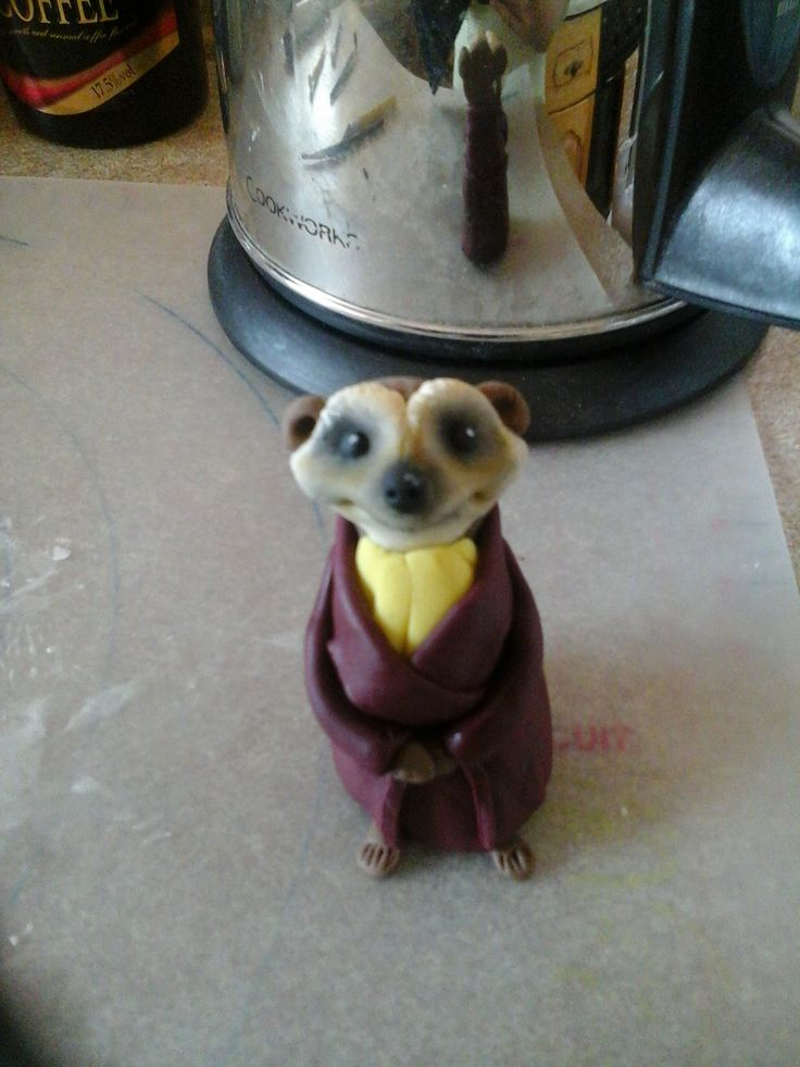 28 Best Images About Meerkat On Pinterest Polymers Ice