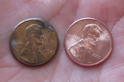 copper and penny lab A few drops of nitric acid are placed on an older copper penny (and the reaction is shown).