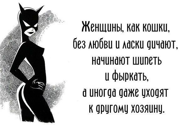 Фабрика приколов. #женщины как кошки