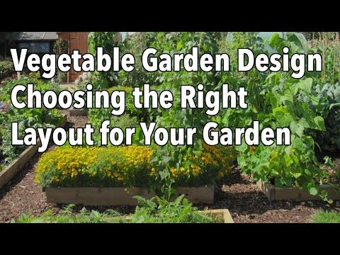 How to choose your perfect layout for your garden, so that you can get your best harvest ever from the space that you have by using either traditional beds or raised ones and a well defined pathway system. A must for people setting up a new garden or replacing an existing one for maximum crop production.