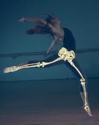 54 best images about full body skeleton on pinterest | models, Skeleton