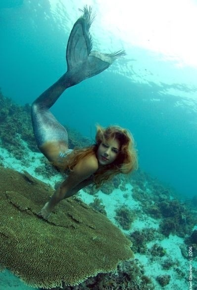 Mermaids. We still have to watch that documentary mel! I forgot about it
