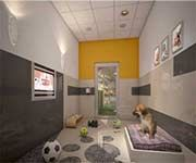 Hotel para perros Si un dueño de mascota paga eso por una operación, ¿Por qué no puede pagar una cantidad mínima por que alguien lo cuide de la mejor forma a su mascota? Con esto haga sus cuentas y calcule lo que puede invertir pero nunca entre con poco dinero, eso no es bueno.