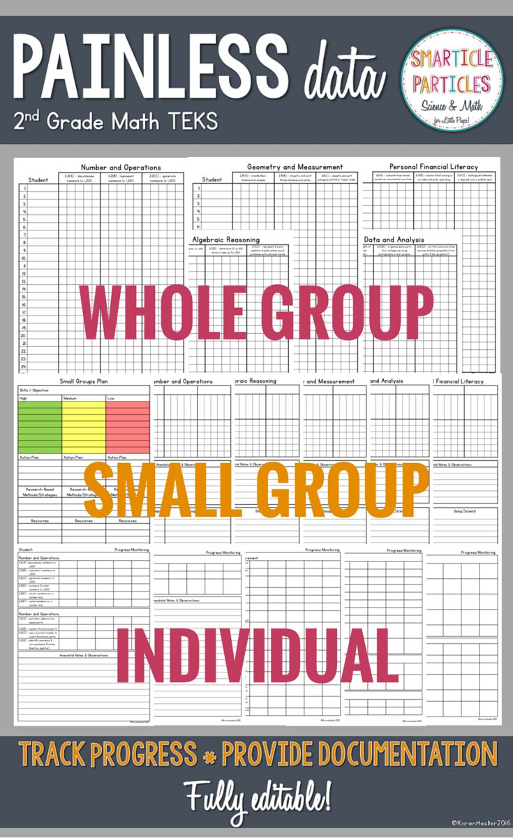 Data Documentation Worksheets for 2nd grade math TEKS. Blank forms also available for other grades and/or standards. FULLY EDITABLE!