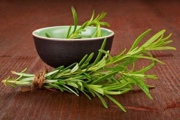 Té de Romero Adelgazante. La planta de romero a través de su infusión o su té puede ser utilizada con fines terapéuticos, dentro de estos usos medicinales..