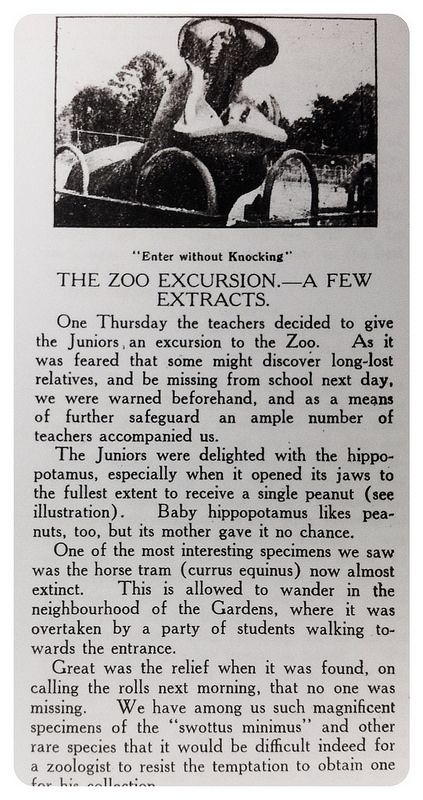 the zoo excursion