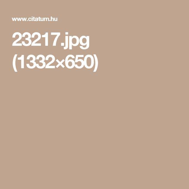 23217.jpg (1332×650)