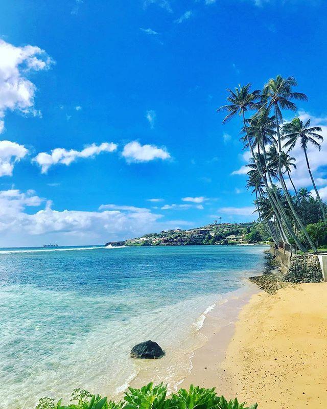 #realtor #realtorlife #realtorlifestyle #realestate #realestateagent  #luxuryrealestate #luxuryliving #hawaii #oahu #honolulu #kahala #beach  #beachfront ...