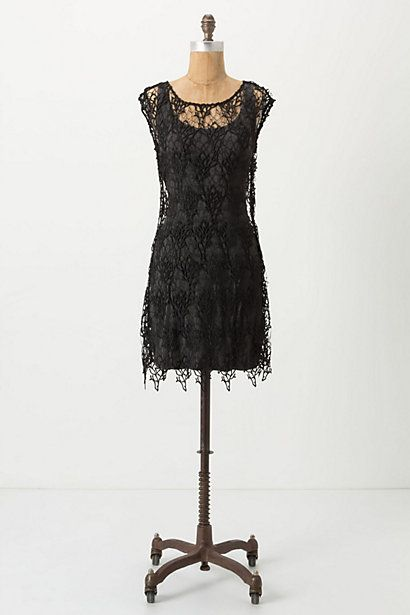 : Dresses Clothing, Dresses Anthropology, Women Dresses, Dresses Style, Coral Lace Dresses, Black Dresses, Anthropologie Com, Black Lace Dresses, Anthropology Coral