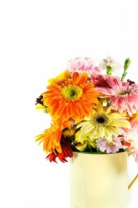 Florile imbunatatesc starea de spirit!