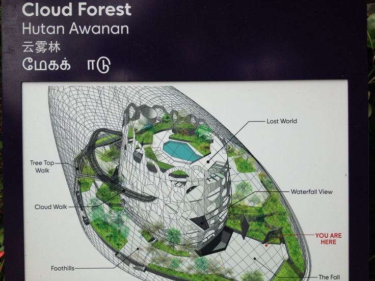 Cloud forest 2 Schematic Singapore