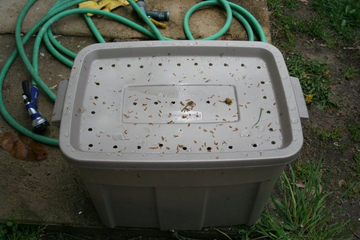 Easy composting: Buy a tub, make holes in the lid and bottom, and you're good to go.  Use food scraps (no meat) - eggshells, fruits, veggies, etc. - and use a shovel to turn it over every week or two.  For the first deposit remember to soak it in water.: Food Scraps, Fruit, Composting Bin, Easy Composting, Deposit Remember, Eggshell