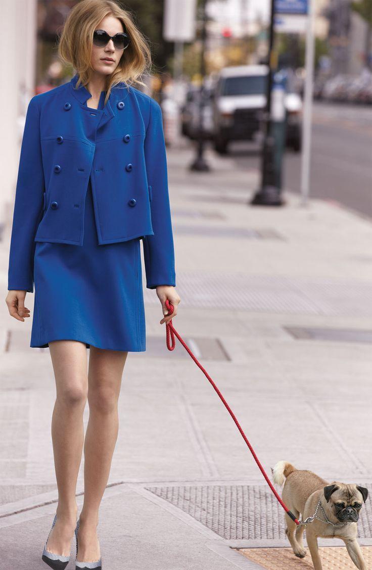 Skirt suits, uniforms, amazing dresses...: Pretty Dresses, Dogs, Fashionista, Blue Suits, Posts, Roy Jackets, Pugs, Skirts Suits, Amazing Dresses