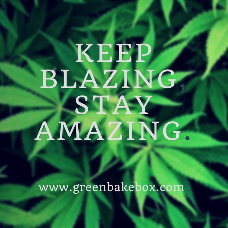 Lyric ganja farmer lyrics : 1028 best & a bit of weed images on Pinterest | Memes de marihuana ...