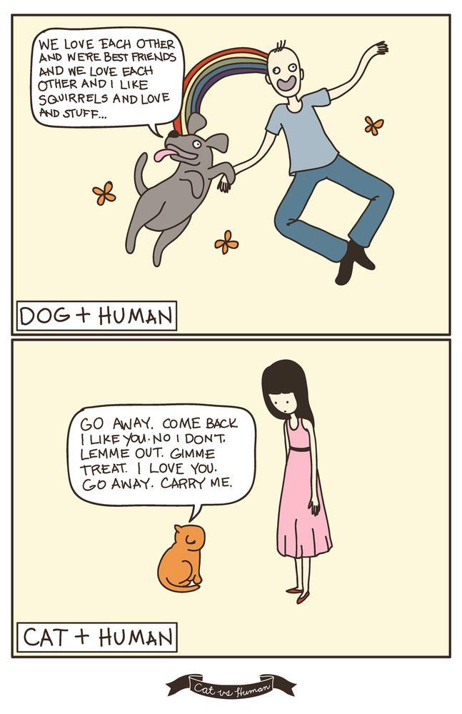 dog vs cat ;)Laugh, Dogs Cat, I Love Cat, Crazy Cat, Funny Stuff, So True, Humor, Giggles, Animal
