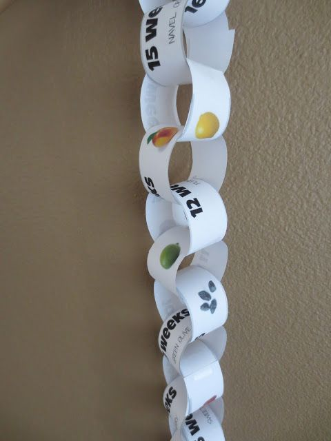 FREE PRINTABLE pregnancy countdown chain- measures weeks with baby size in fruit