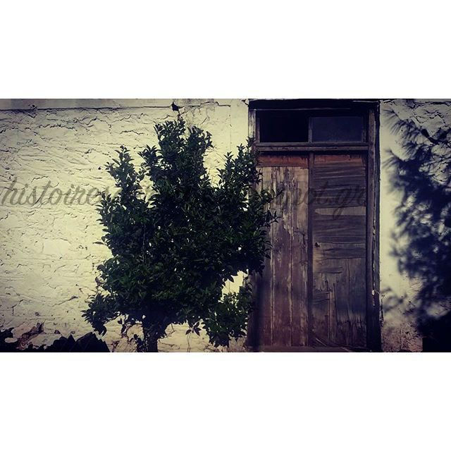 "Histoires De Roses: Ο Κήπος της γιαγιας ""Χειμώνας"" Greece, old house, winter ,"