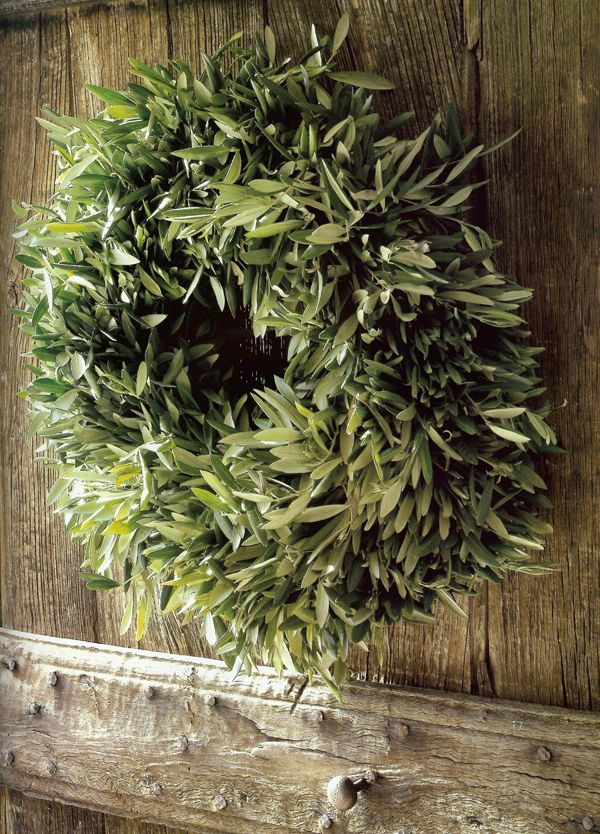 Olive tree wreath: Christmas Wreaths, Olives Trees, Posts, Olives Wreaths, Gardens, Holidays Decor, Green Wreaths, Leaves, Holidays Wreaths