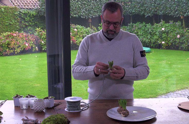 Romeo Sommers van Green Your Day krijgt al lentekriebels. Deze week gaat hij aan de slag met bloembollen. Niet voor in de tuin, maar om binnen te laten bloeien. In een nieuw jasje Bloembollen kunnen zonder wortels bloeien. In de bol zit voldoende voeding voor de bloem om het een tijdje uit te houden. Dus…