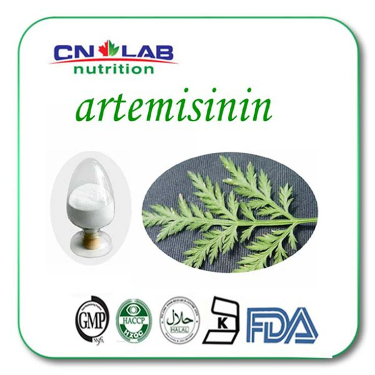 Hot sale Artemisia Annua extract/Artemisinin 99%/Artemisinin powder/antibacterial plant extract 500g/lot